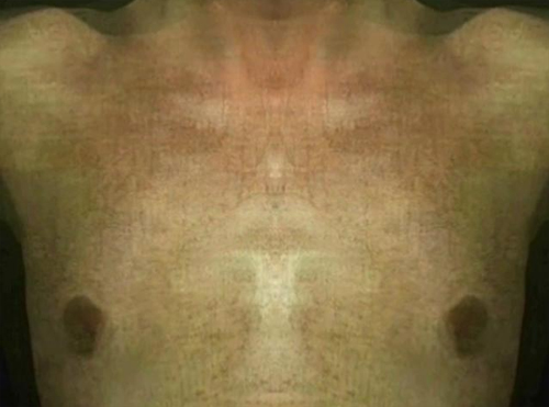 Andrey Stegura  Facial Features SYMPOSIUM OF CONTEMPORARY ART BIRUCHIY ARTZEBS